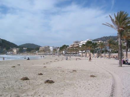Strand von Paguera im März - Strand Paguera/Peguera