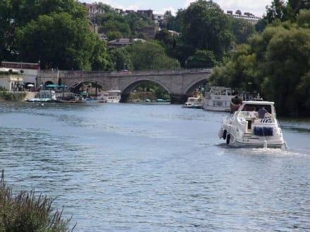 Die Themse bei Richmond - Richmond upon Thames