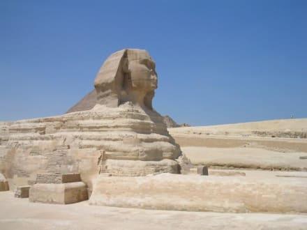 Tagesausflug-Kairo - Sphinx von Gizeh