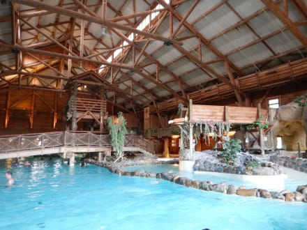 Schwimmbad bild hotel disney 39 s davy crockett ranch in for Piscine hotel davy crockett