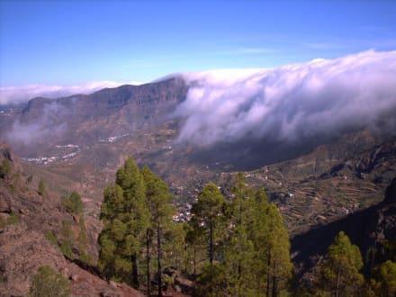 Pico de las Nieves 1994 meter hoch - Pico de las Nieves