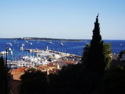 Beach/Coast/Harbor - Beach Cannes
