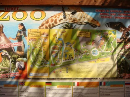 Plakat vor dem Zoo - Oasis Park