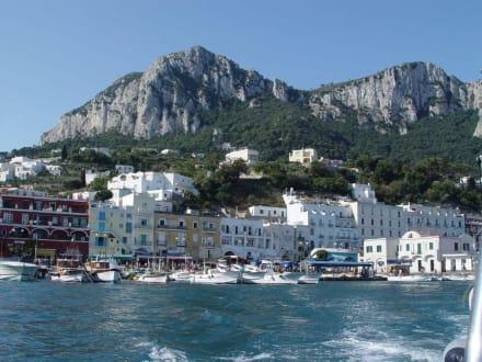Hafen von Capri - Hafen Capri