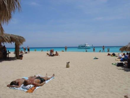 Ausflug auf die Paradiesinsel! - Giftun / Mahmya Inseln