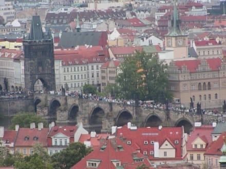 Blick auf die Karlsbrücke - Karlsbrücke