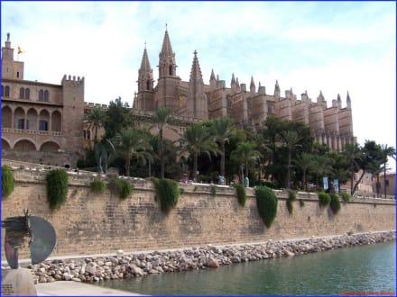 Kathedrale La Seu in Palma - Kathedrale La Seu