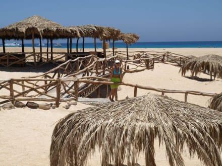 Strand/Küste/Hafen - Giftun / Mahmya Inseln