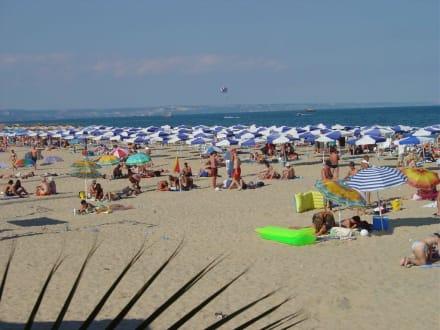 Goldstrand Strandaufnahme - Strand Goldstrand