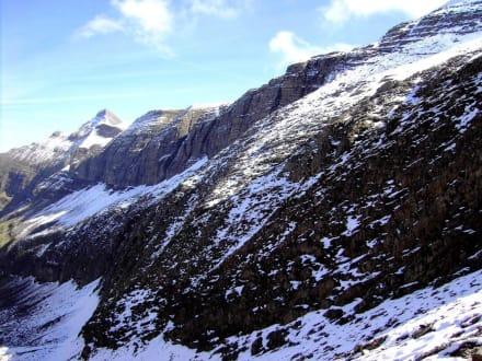 Höhenweg First-Faulhorn-Schynige Platte (9) - First