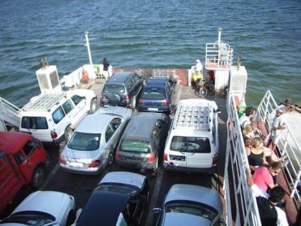 Die Fähre ist voll... - Transport