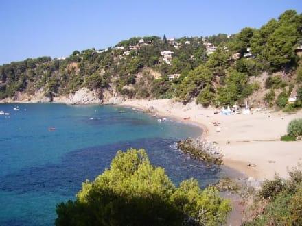 Großer Strand Cala Llevadó - Strand Tossa de Mar