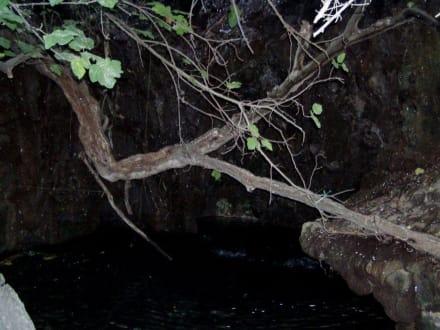 Grotte/Bad der Aphrodite - Bad der Aphrodite