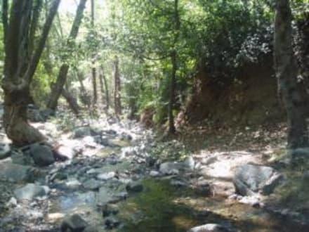 Kleiner Fluss / Troodos - Troodos Gebirge