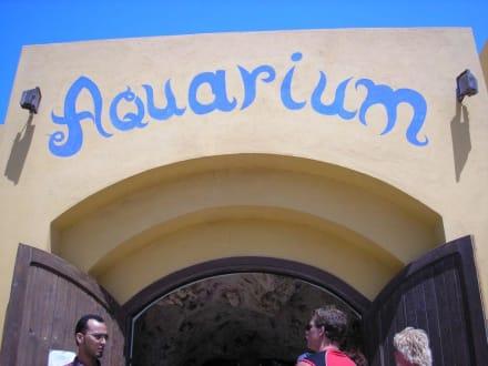 Der Eingang des Aquariums El Gouna - Aquarium