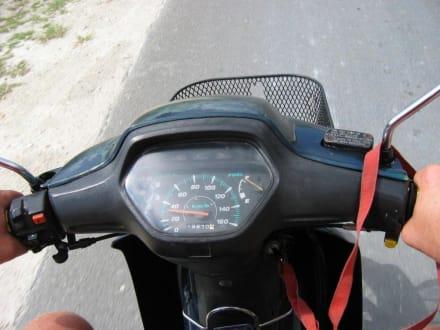 Moped - Mopedausflug