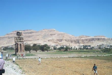 Ausflug - Kolosse von Memnon