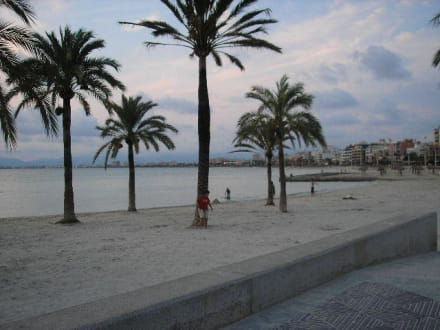 Strand - Strand El Arenal/S'Arenal