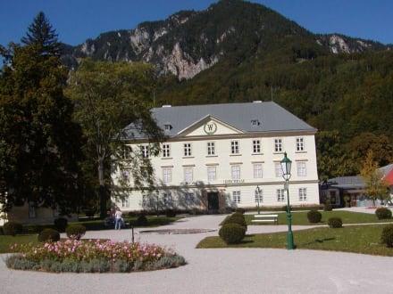 Schloss Reichenau - Schloss Reichenau
