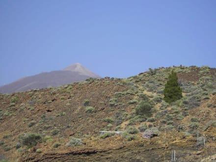 Höchster Berg Spaniens - Teide Nationalpark