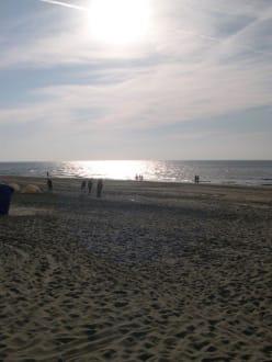 Zandvoorter Strand - Strand Zandvoort