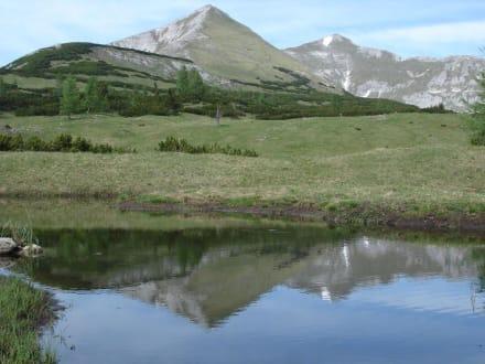 Berg Kleinmölbing - Kleinmölbing
