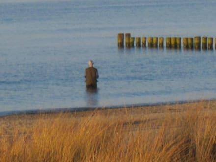 Einsamer Angler - Strand Kühlungsborn