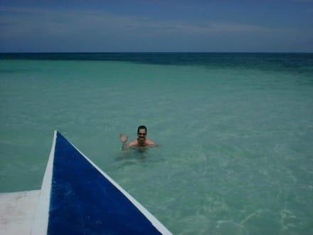 Baden in der karibischen See - Isla Saona