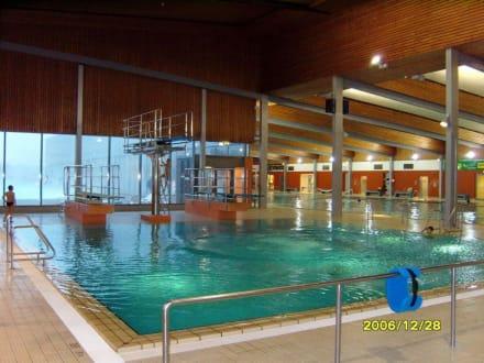 Springerbecken! - Dithmarscher Wasserwelt