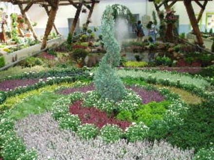 In der Halle - Gartenschau