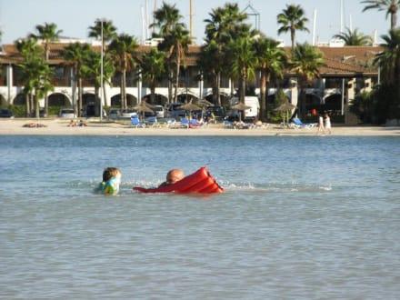 Bucht & Strand von Alcudia - Strand Alcudia