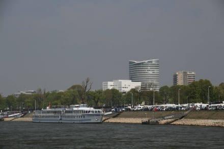 Rechtes Rheinufer mit Kreuzfahrtschiffen - Rhein - Schifffahrt Weisse Flotte Düsseldorf