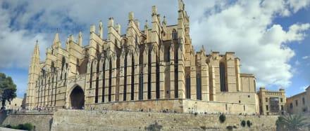 Panorama von der Kathedrale La Seu - Kathedrale La Seu