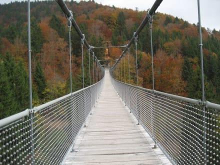 Hängebrücke - Steinwasen Park
