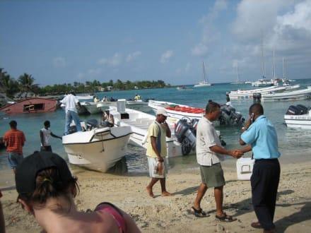 Bootsanleger - RH Tours Ausflüge Punta Cana