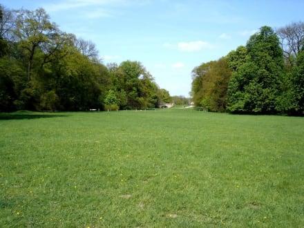 Bürgerpark Bremen - Bürgerpark und Stadtwald