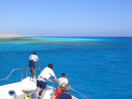 Blick auf Naturschutzgebiet Mahmya - Giftun / Mahmya Inseln