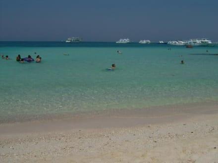 Schnorchelausflug2 - Schnorcheln Hurghada