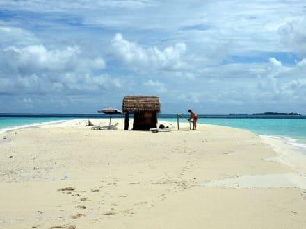 Dream-Island - Dream Island