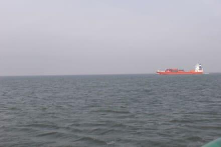 Ausflugsfahrt mit der WEGA 2 - Ausflugsschiff Wega 2