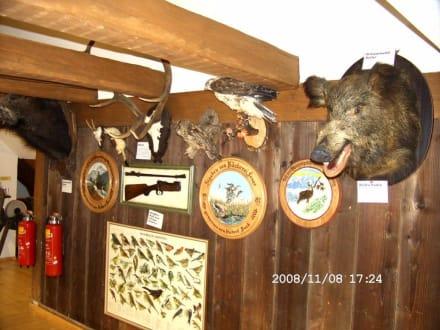 Jagd - Kleinmuseum Klösterle