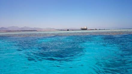 Korallenriff mit Boot erreichbar - Schnorcheln Sharm el Sheikh