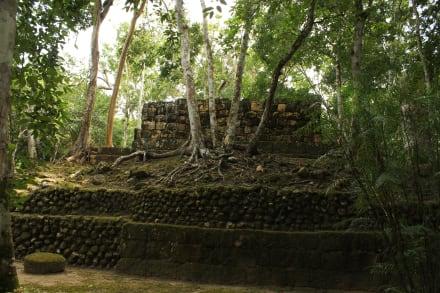 Calakmul - Calakmul