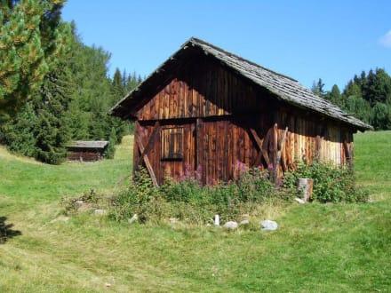 Hütte auf der Rodenecker Alm - Rodenecker Alm