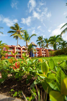 Hotel Grounds -