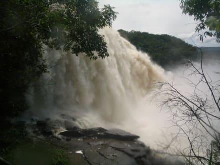 Sind das Wassermassen - Wasserfälle von Canaima - Salto Sapo