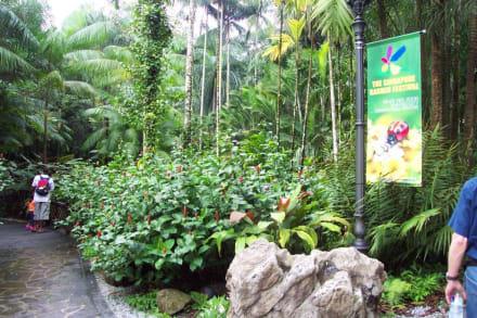 Botanischer Garten Singapore - Botanischer Garten Singapur