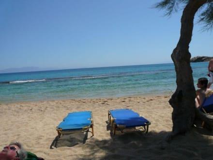 Auch das ist Paradise - Beach - Paradise Beach