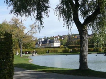 Blick auf das Schloss Veitshöchheim - Schloss & Rokoko-Hofgarten Veitshöchheim