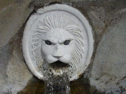 Einer der Löwenköpfe - Spili